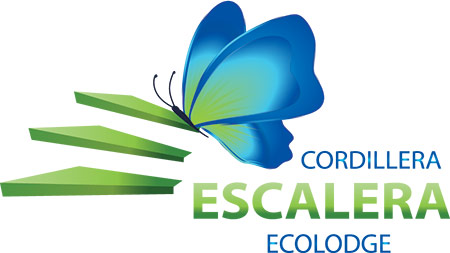 Эколодж «Cordillera Escalera», г. Тарапото, Перу